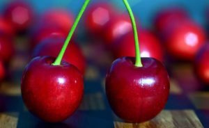 Вишневые плодоножки