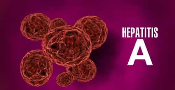 Пути заражения вирусом гепатитом А
