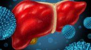 Как сдавать кровь на гепатит С: особенности подготовки и забора крови