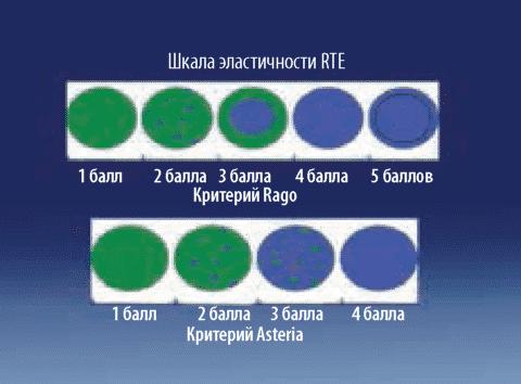Оценка результатов эластографии по шкалам
