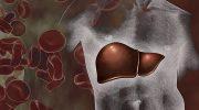 Признаки и лечение воспаления печени у мужчин