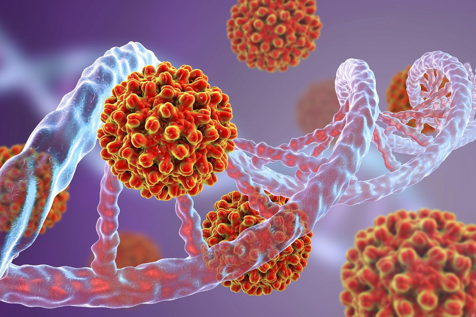 Анализ на австралийский антиген: что это такое, положительный и отрицательный результат