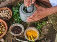 Причины, симптомы и лечение увеличенной печени народными средствами. Какие травы помогают?
